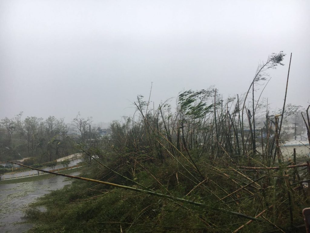 Puerto Rico aftermath Hurricane Maria