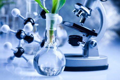 Biome Bioplastics builds biosciences skill base